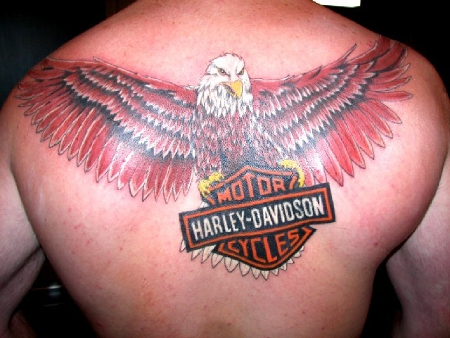 Harley Davidson - By: Larry Ross