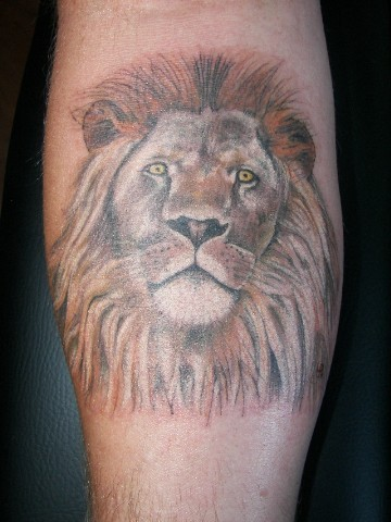 Lion - By:Larry Ross